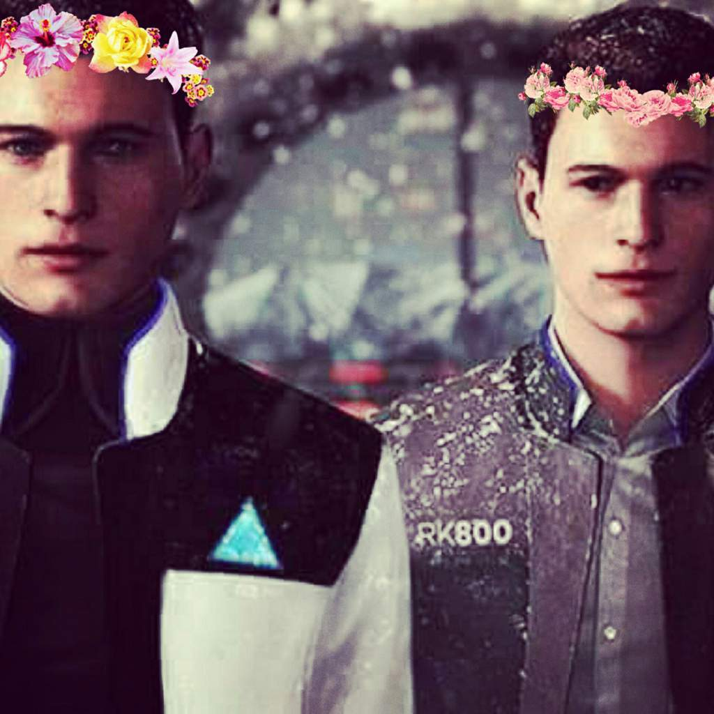 I Put Flower Crowns On Connor And Conan Detroitbecome Human