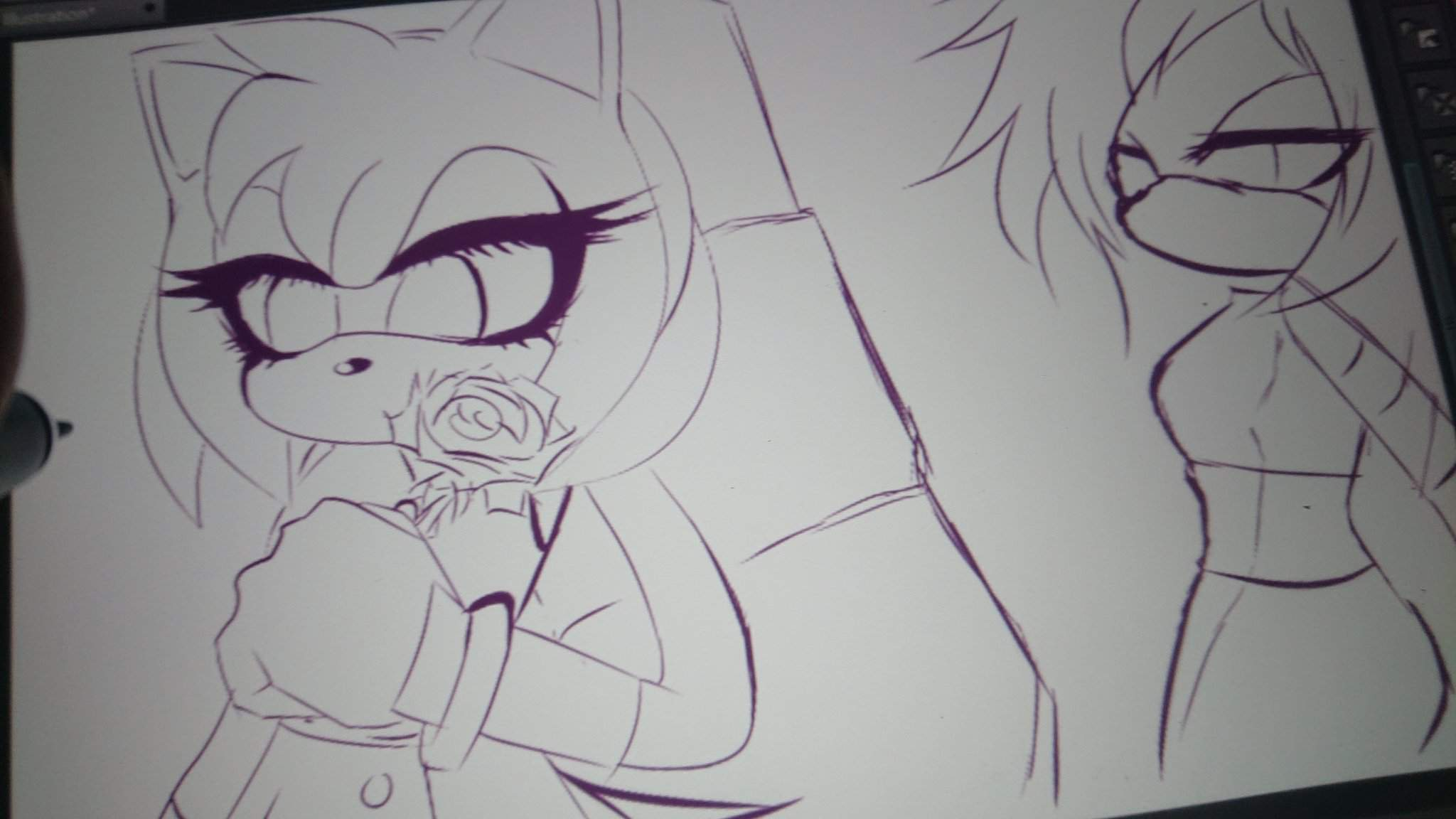 Amy Wip the roses neø and amy wip | sonic the hedgehog! amino