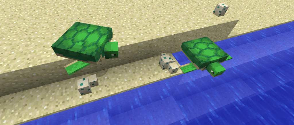 All About Turtles Minecraft Amino