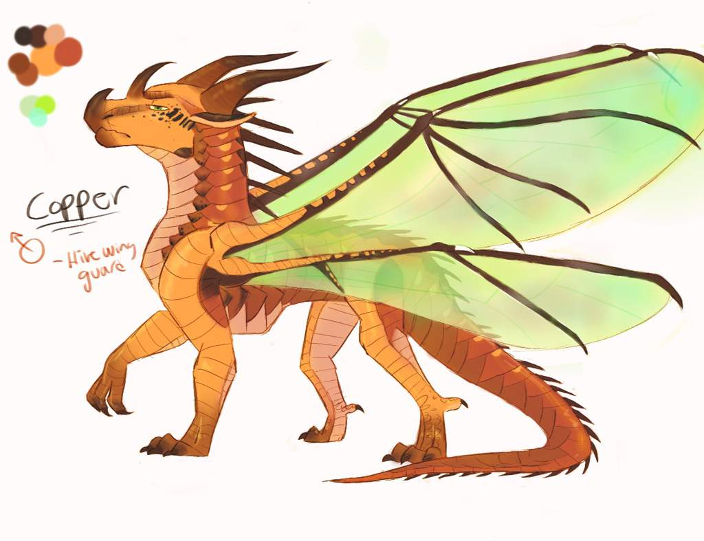 Copper Hivewing Oc They Re Cool Too Wings Of Fire Amino