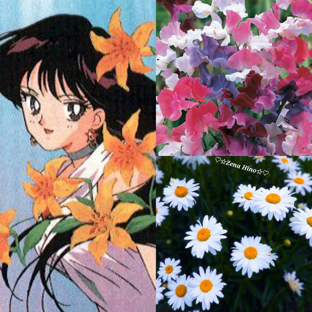 Sm april birth flower sailor moon amino the april birth flowers are the daisy the sweet pea izmirmasajfo