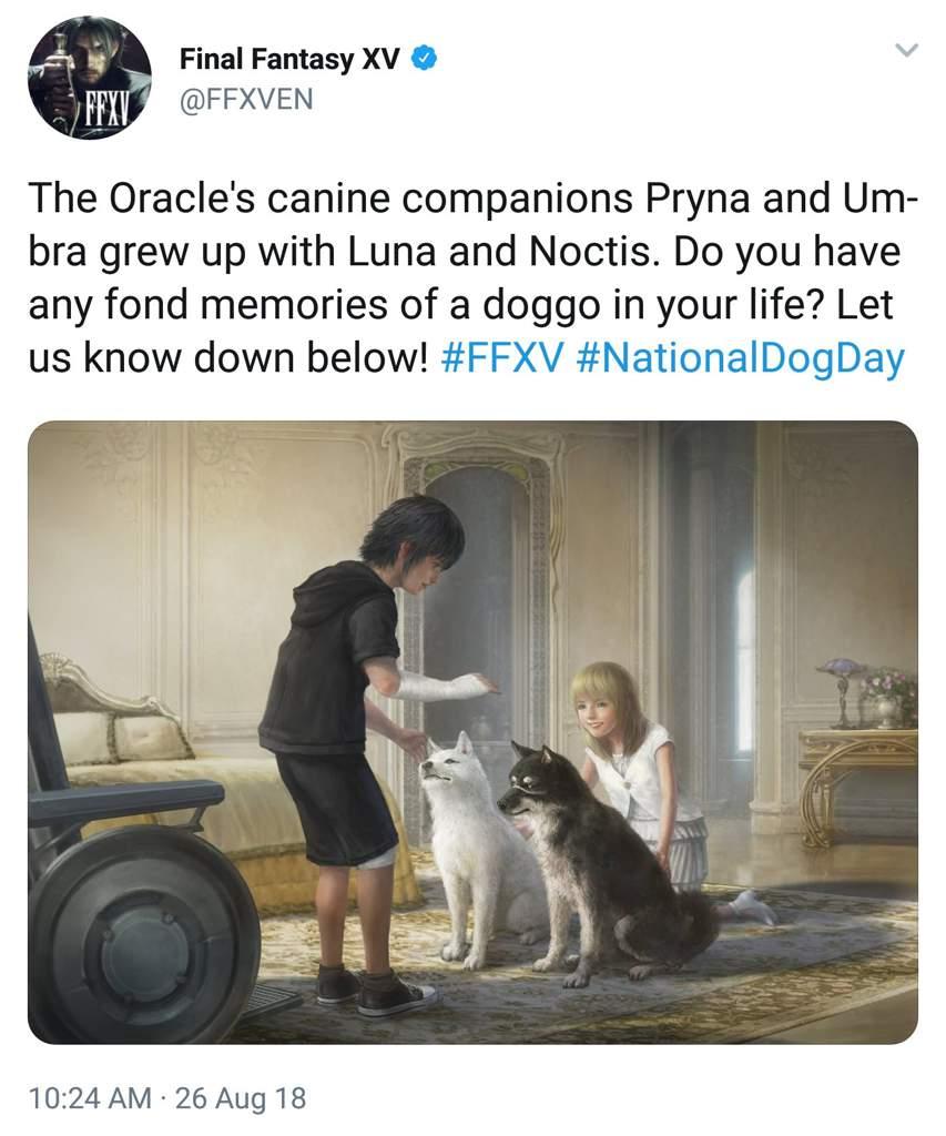 ffxv twitter national dog day final fantasy xv amino