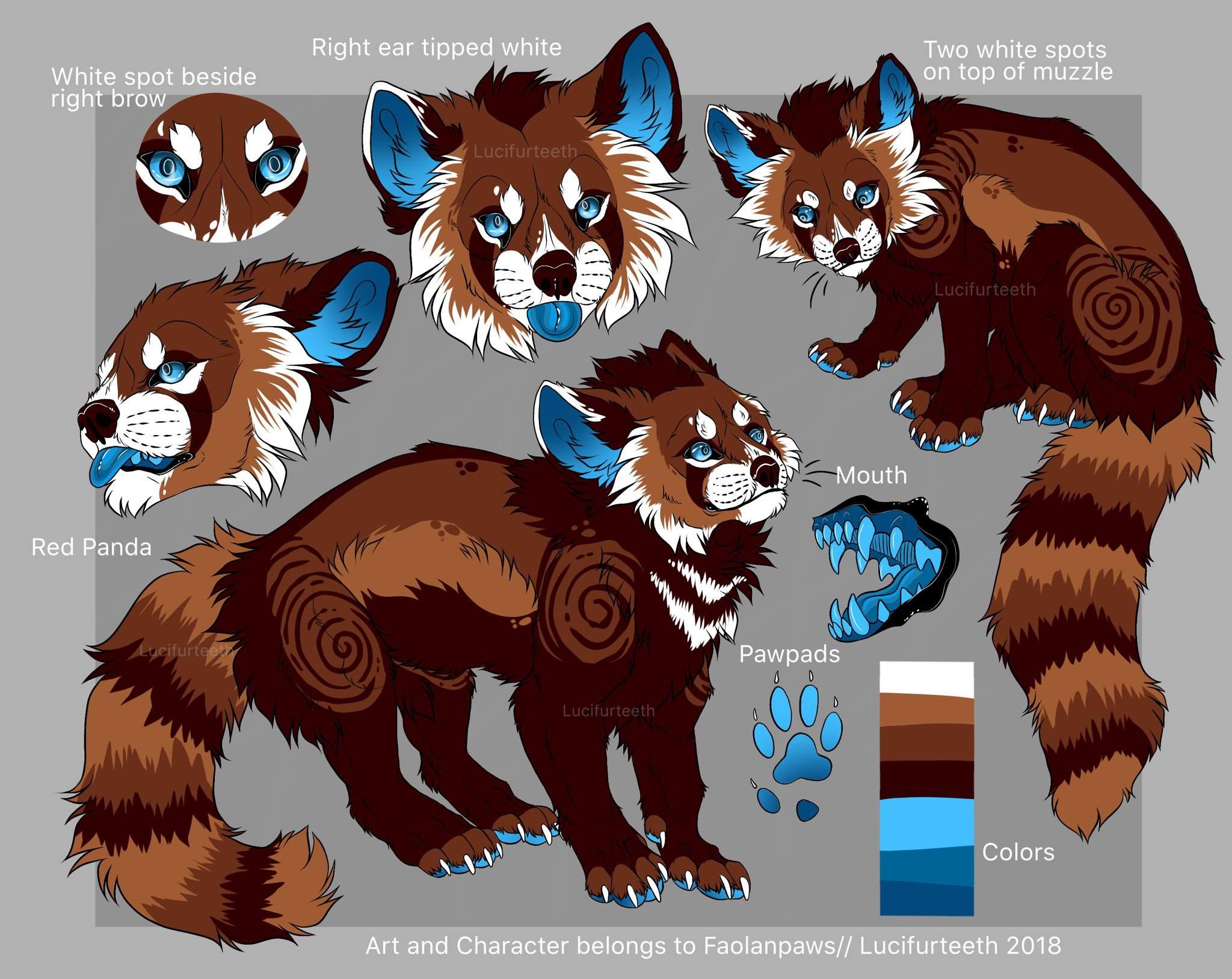 Fursuit Panda red panda | furry amino