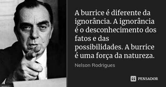Frases de Nelson Rodrigues | Amantes do Saber™ Amino