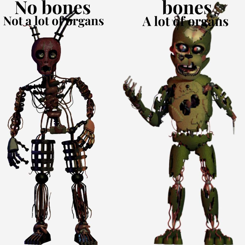 Williams Bones Token Out? Scraptrap Theory.