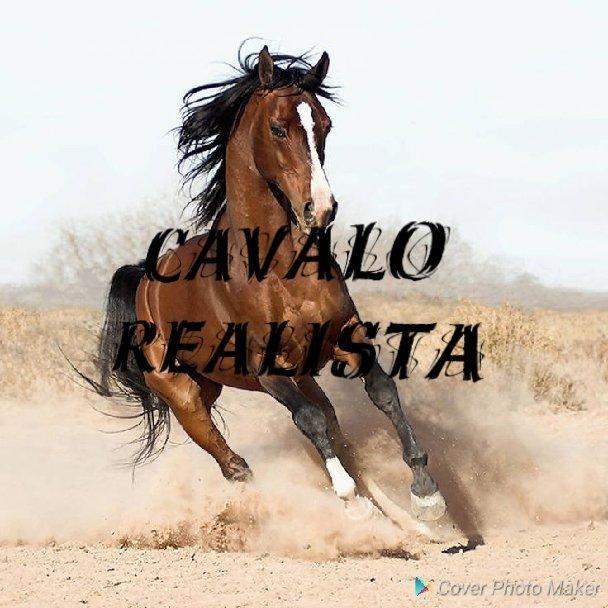 Cavalo Realista Desenhistas Do Amino Amino