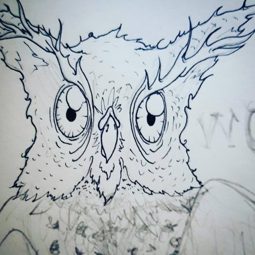 Here Looking At Whooooo Wise Owl I Did A While Back