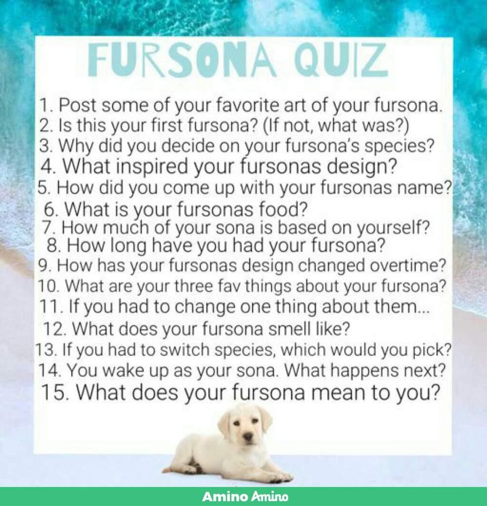 Fursona Name Quiz