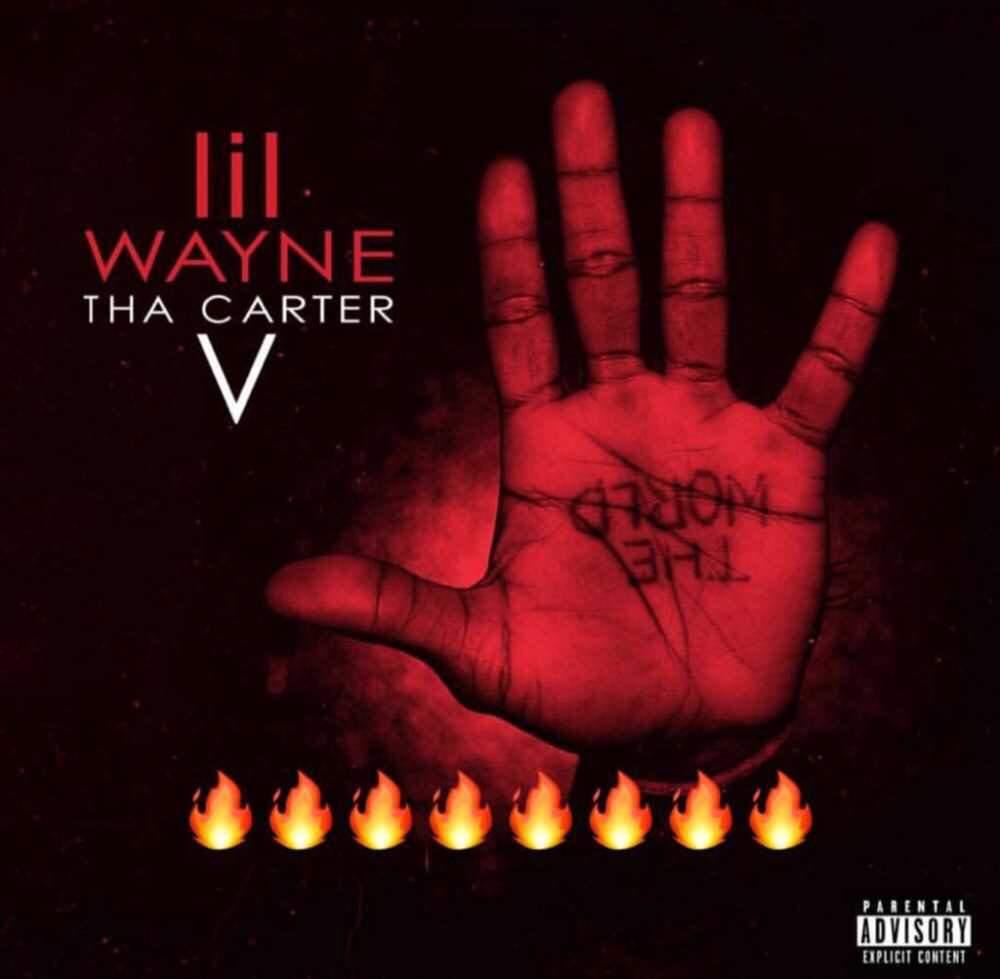 Tha Carter V Album Review Rap Hip Hop Amino