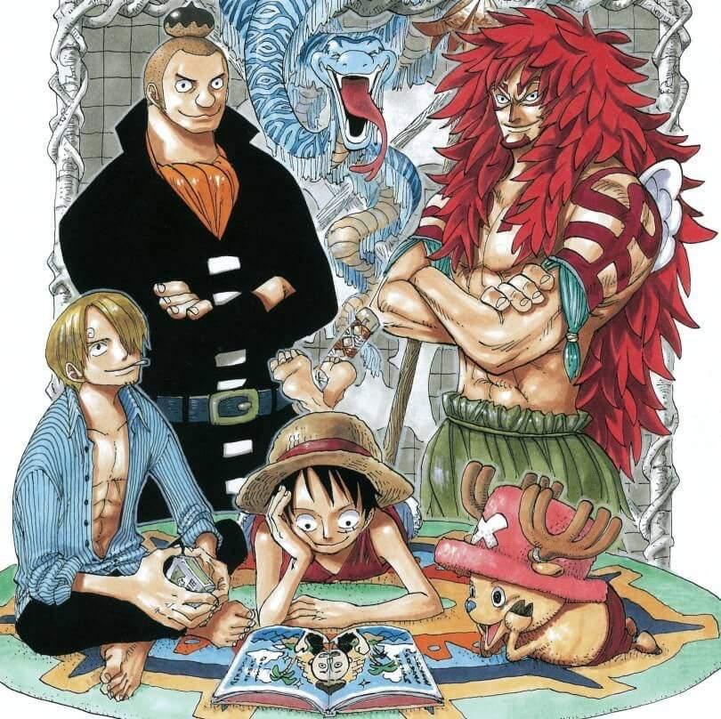 My Top 10 Favourite Arcs | One Piece Amino