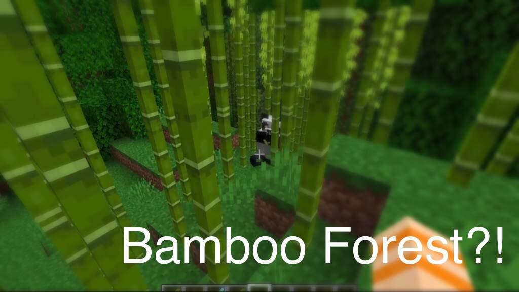 Panda Predictions Minecraft Amino
