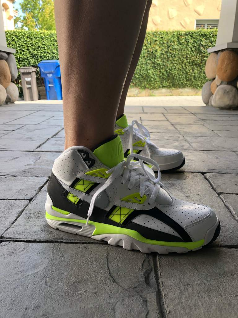 c39cee556754 Nike Air Trainer SC High