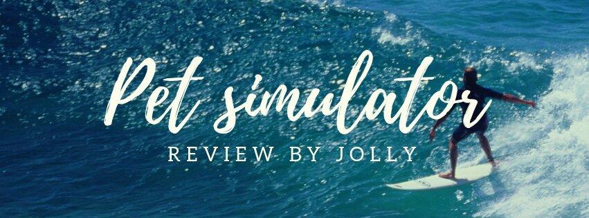 Pet Simulator Game Review Roblox Amino