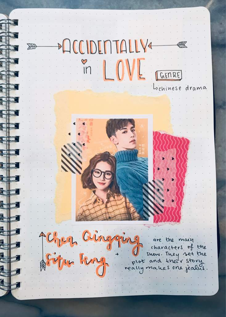 Happy Journal #1 Netflix show accidently in love | Bullet Journal Amino