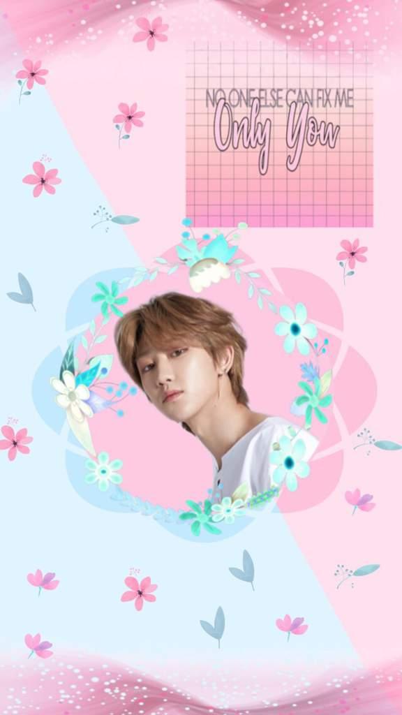 Seventeen Members Wallpaper Edits Carat Amino