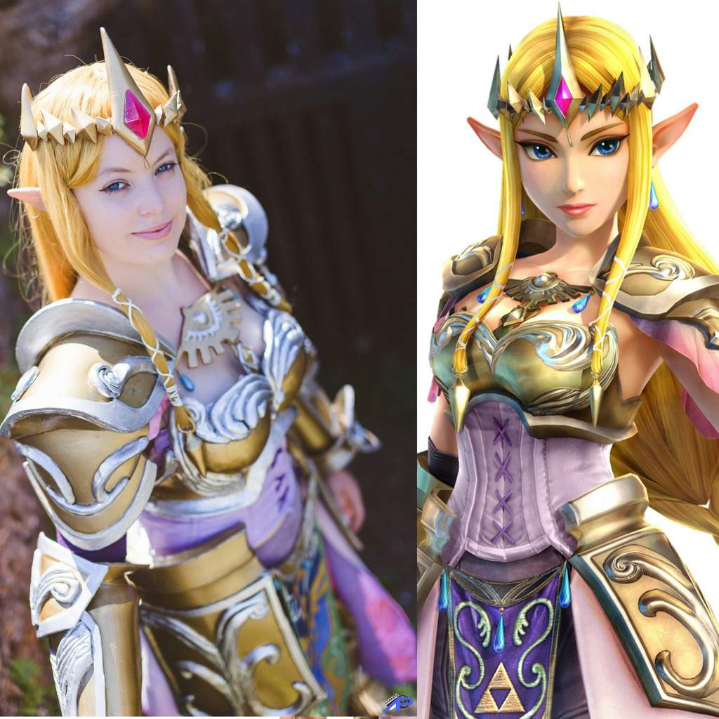 Princess Zelda Hyrule Warriors Cosplay Amino