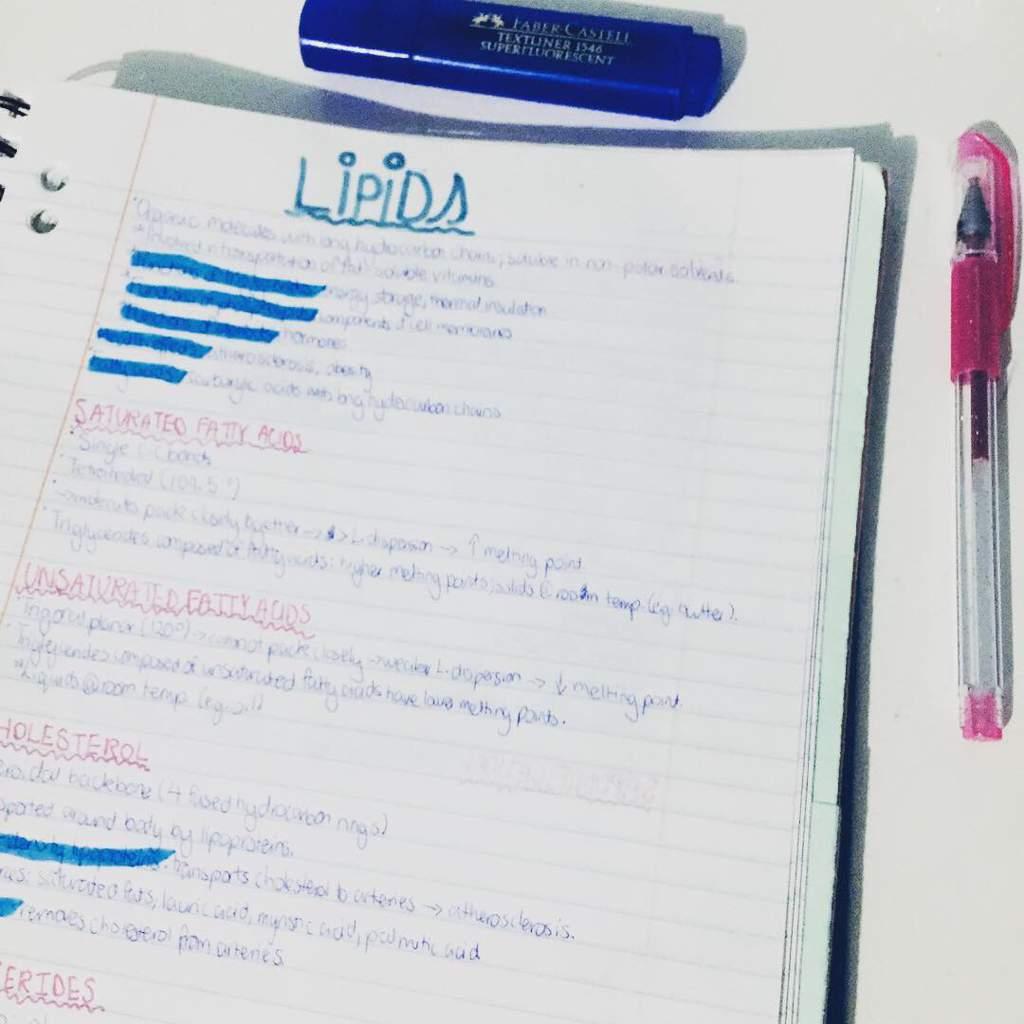 My I B  Chemistry notes | Studying Amino Amino