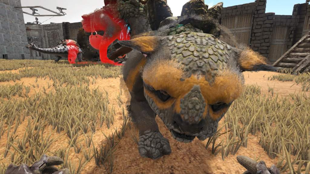 Gacha baby | Ark Survival Evolved Amino