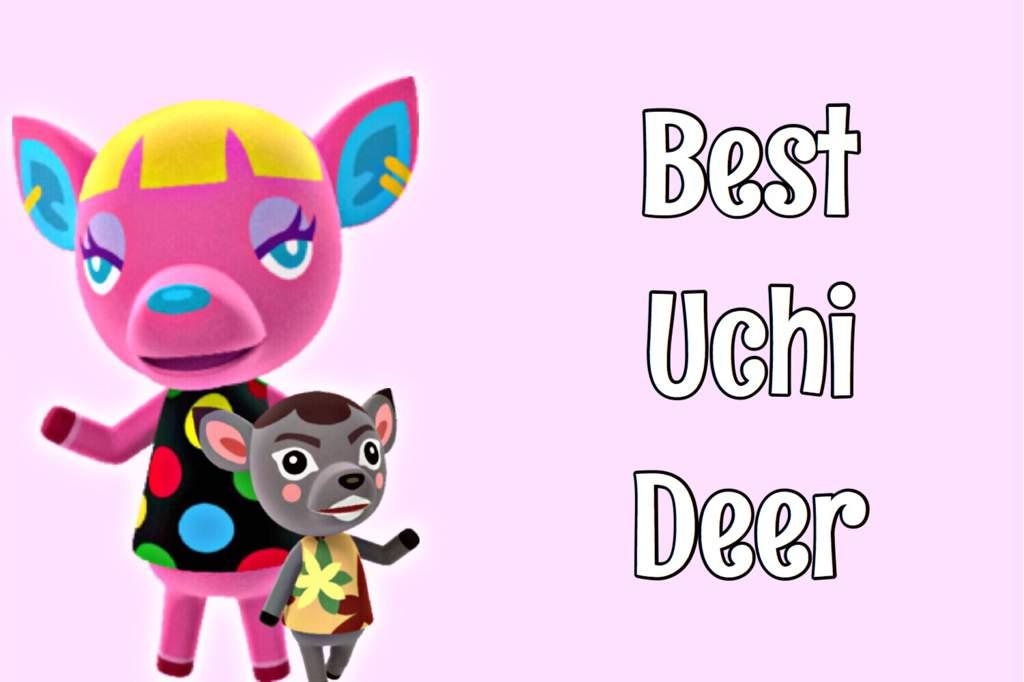 Aca S Best Deer Poll Results Animal Crossing Amino