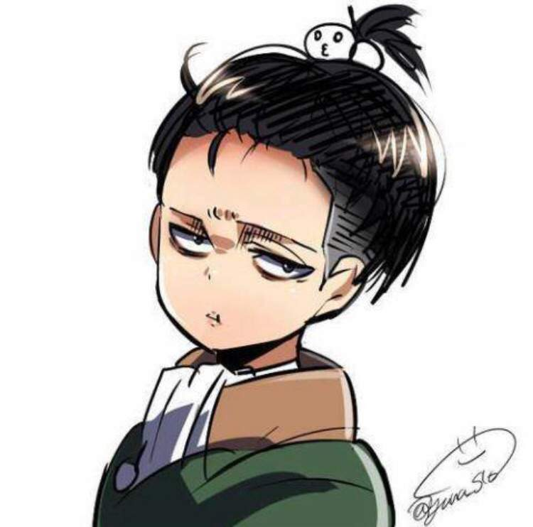 Levi Ackerman Analysis Attack On Titan Amino