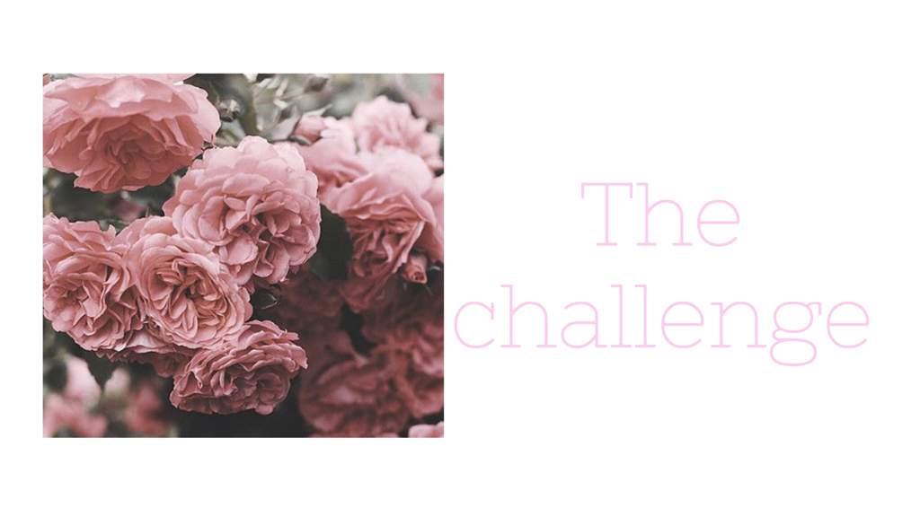 BitLife Challenge | Marvel Amino