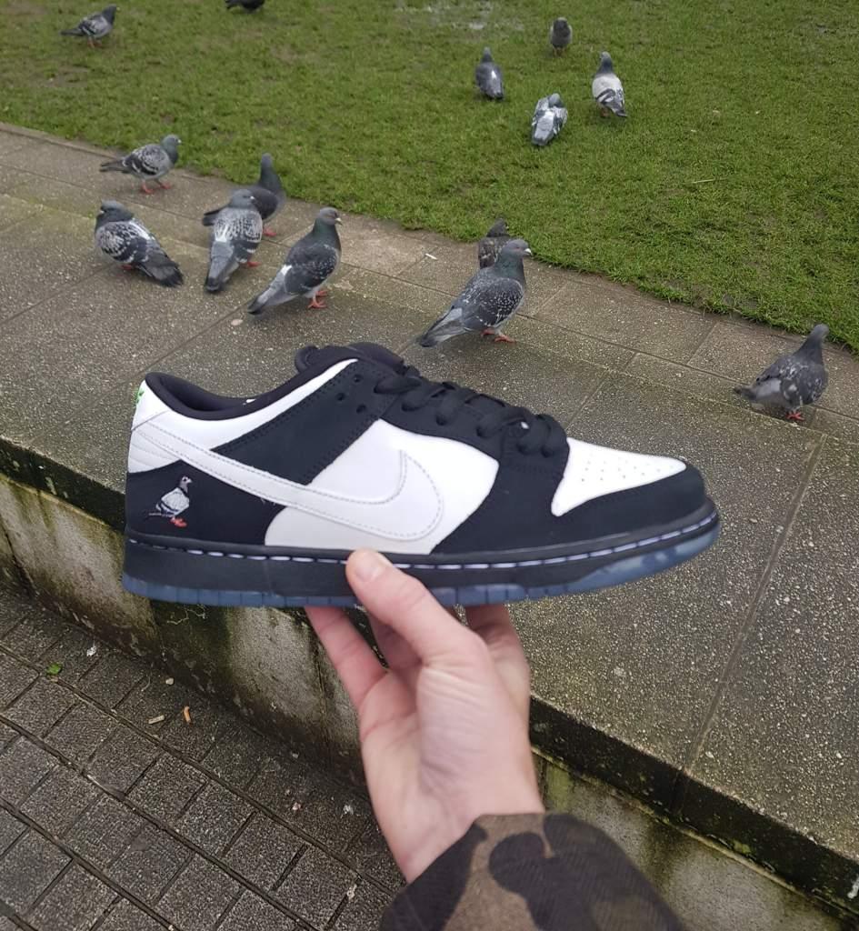 the latest fdcc7 6c60d Nike Sb Panda Pigeon Dunk | Sneakerheads Amino