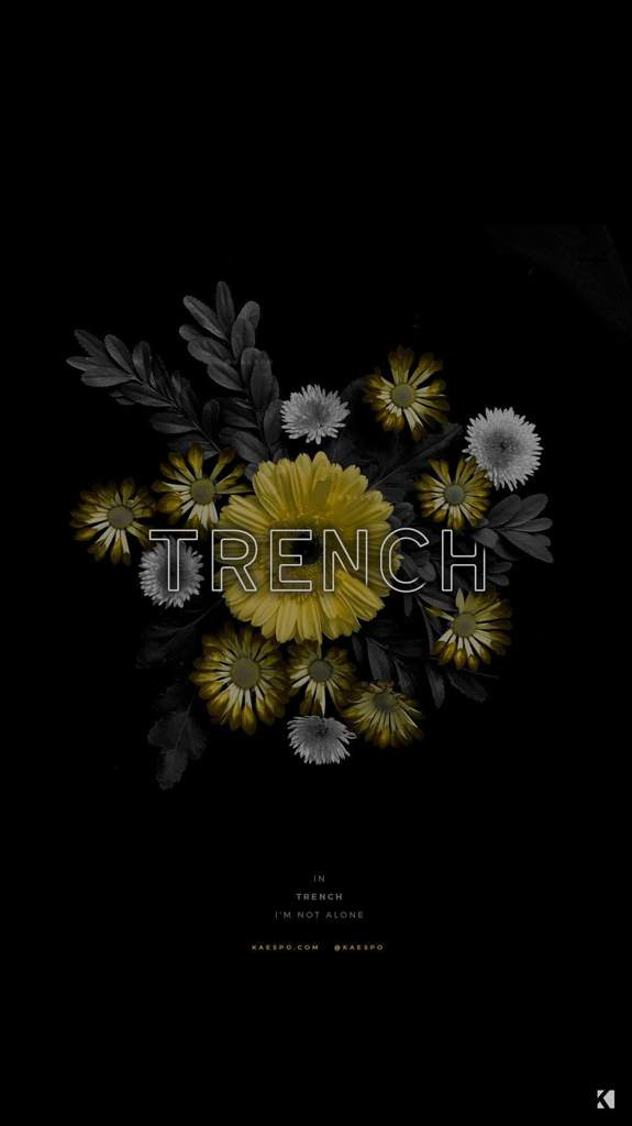 Wallpapers Twenty One Pilots Br Amino