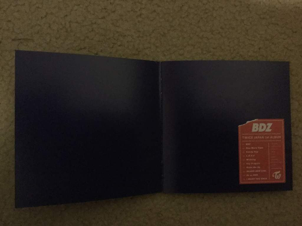 Day 1: BDZ Album Reveal | Twice (트와이스)ㅤ Amino