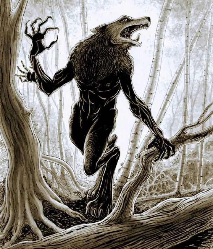 Image result for skinwalker