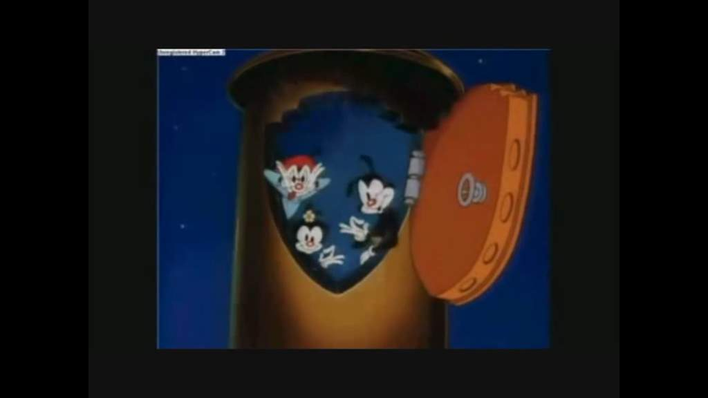 🗑️TrAsH cAn🗑️ | Animaniacs Amino