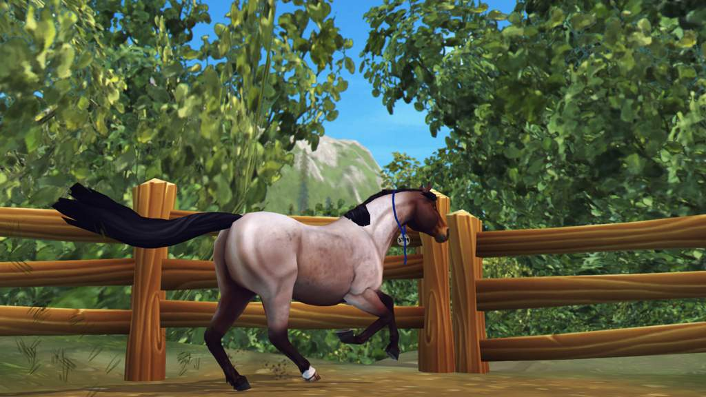 Extreme Mustang Makeover- Pick Up! | Star Stable Online Amino