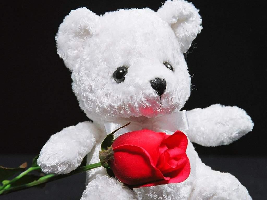 сюжету картинки мишки и розы для тебя мечту поверь желанья