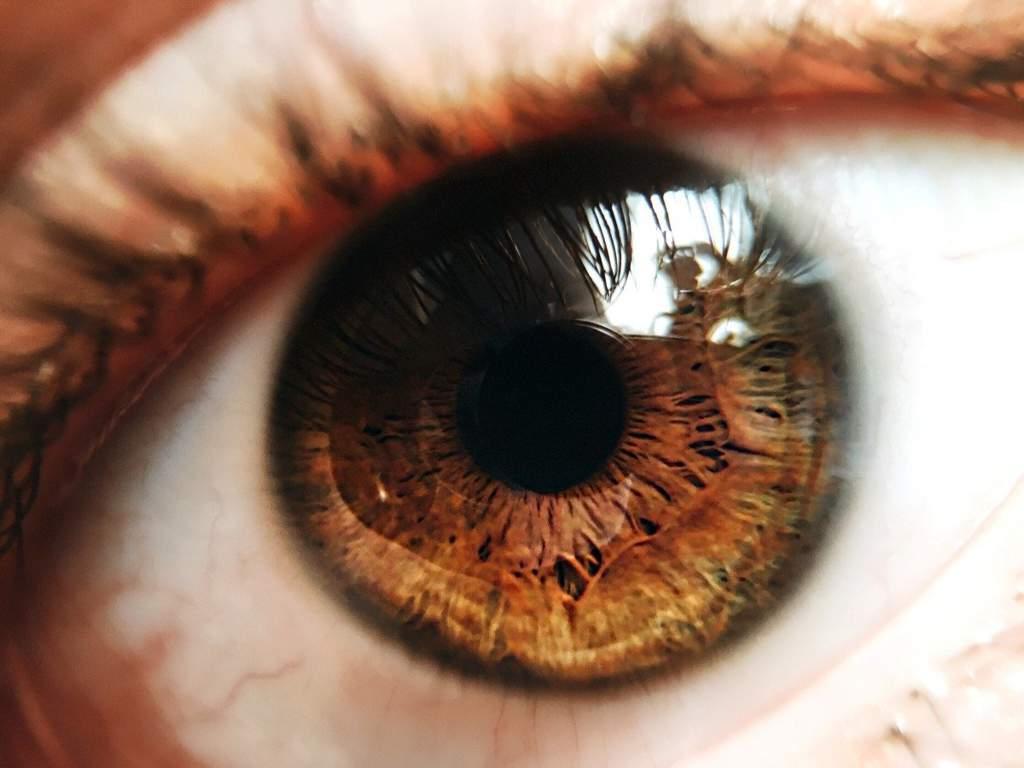 Про карие глаза с картинками