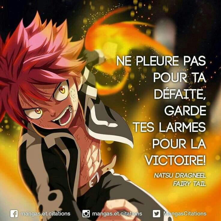 Citacion 1 Fairy Tail Fr Amino