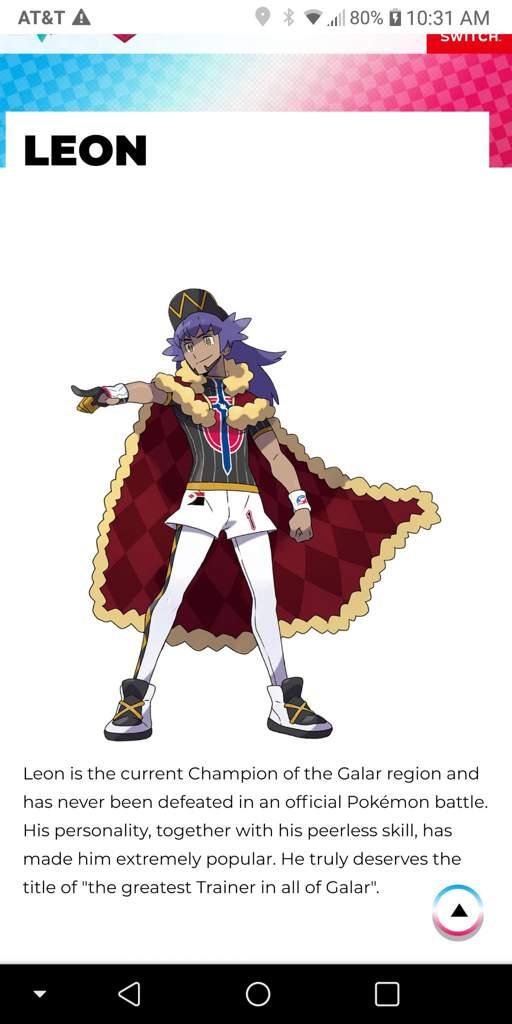 Pokemon Champion Pokemon Sword And Shield Amino