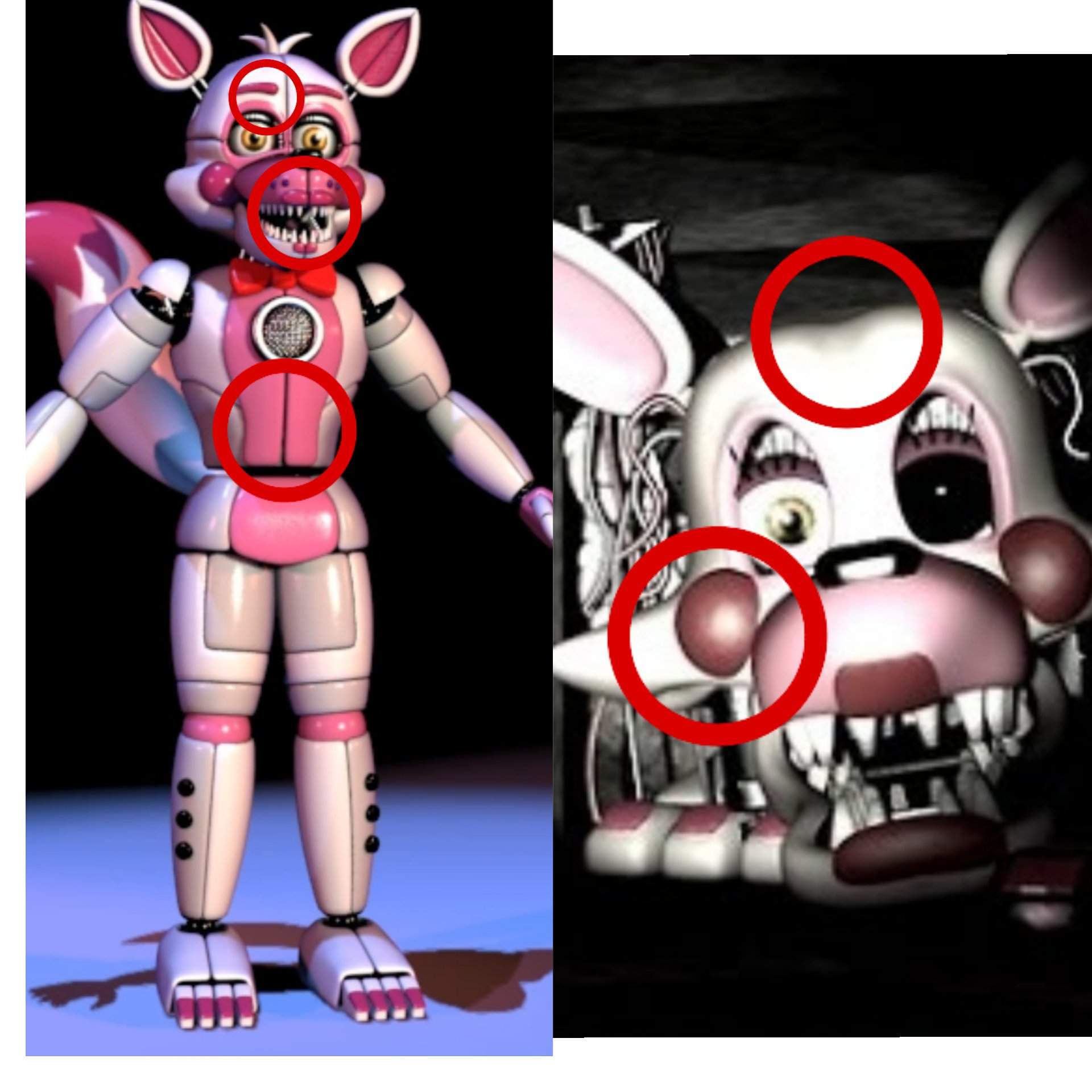 5 Nights At Foxys mangle and sl funtime foxy are not the same- fnaf theory