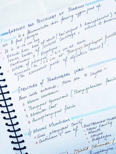 PDF download of Aula Internacional 1 neuva educin | Studying Amino Amino