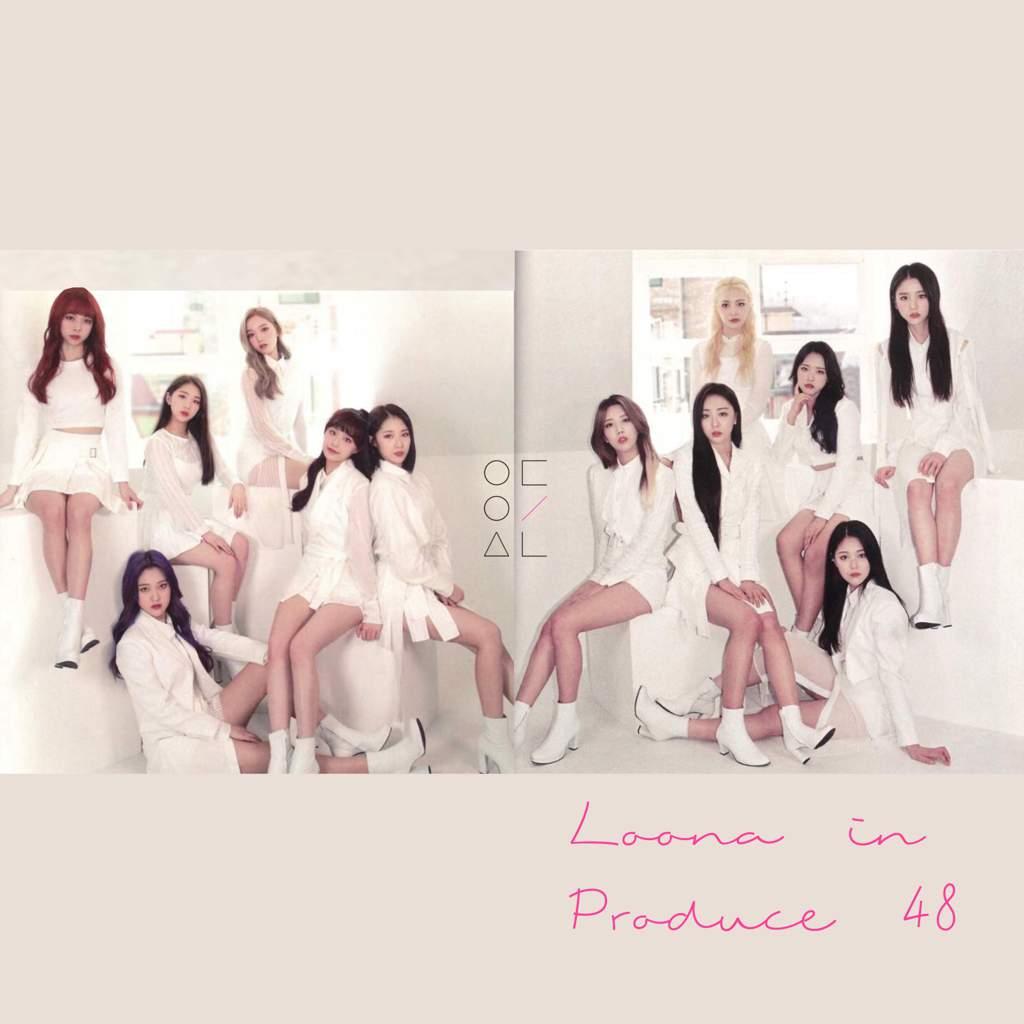 🌸 | loona x p48 | LOOΠΔ Amino Amino