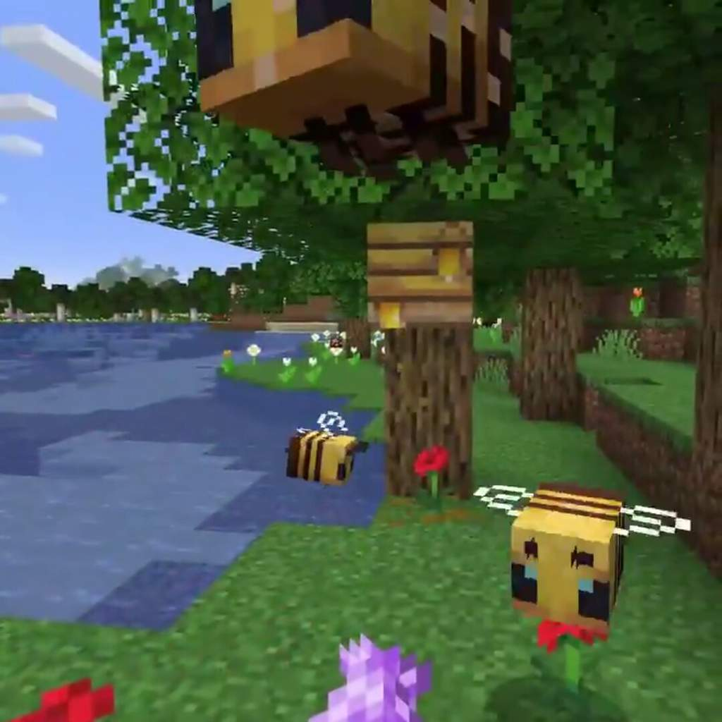 Finally New Bees Mob New Snapshot 19w34a Minecraft Earth
