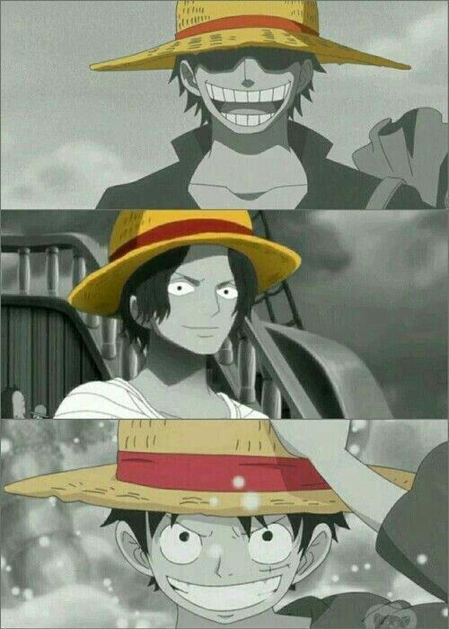 Inherited Will   Anime Amino