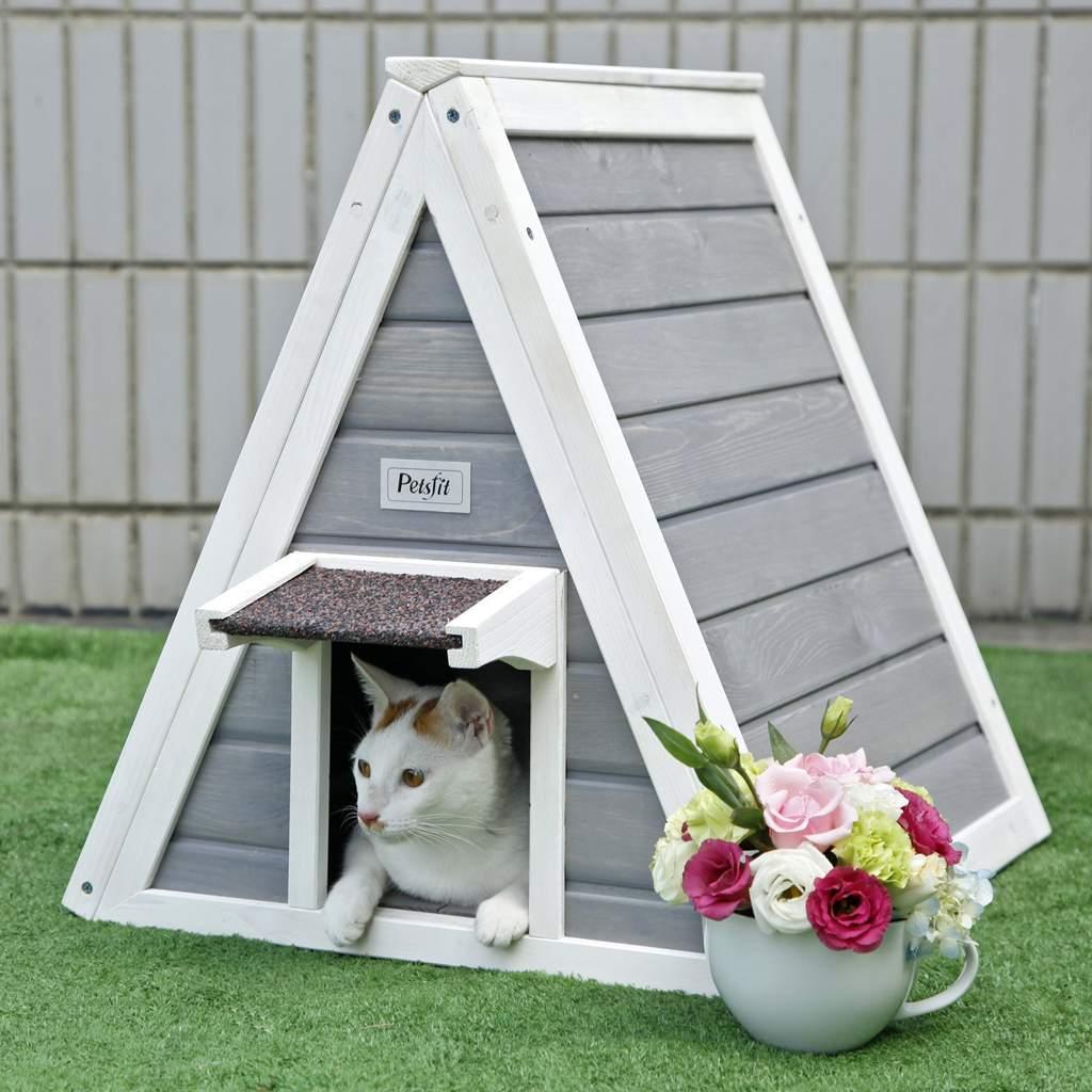 теплый домик для кошки фото травматологии