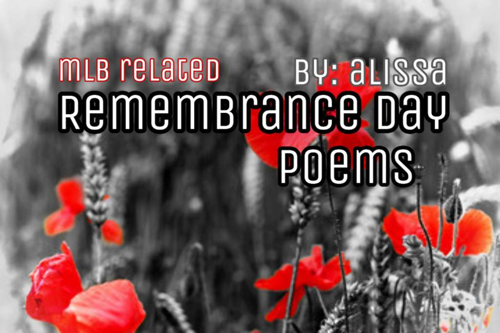 Remembrance Day Poems Miraculous Amino