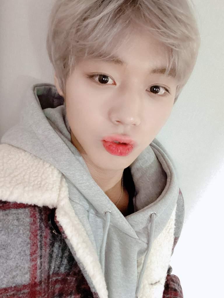 Park Jihoon Twitter Update Wanna One 워너원 Amino