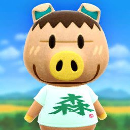Latest Animal Crossing Amino