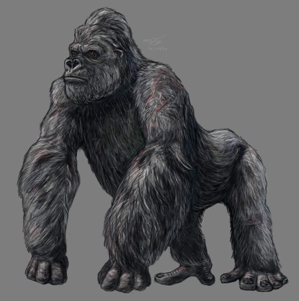 King Kong 2005 Vs George Rampage Battle Arena Amino Amino